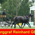 Burggraf Reinhard GER Winner CAI-A Altenfelden 2009, Golden Wheel Trophy Golden Wheel CUP .